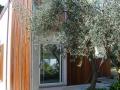 CASA_FRA_GLI ULIVI_armellino (6).jpg