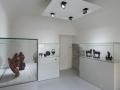 museo-della-ceramica_Armellino_e_Poggio (13).jpg
